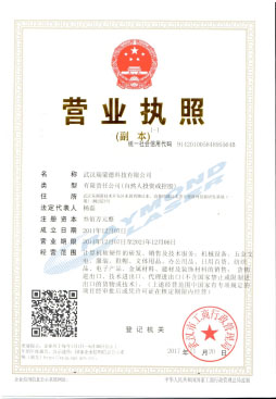 Raymond Business License